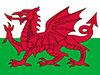Welsh Services